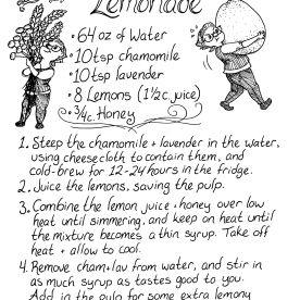I made some delicious lemonade and I was so pleased with it that I wanted to share the recipe! For a vegan-friendly lemonade, substitute the honey with agave nectar, adjusting the measurement to your taste. I hope you enjoy!